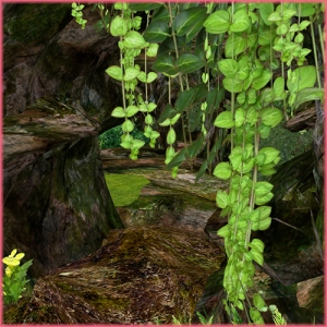 Romance_Garden_003